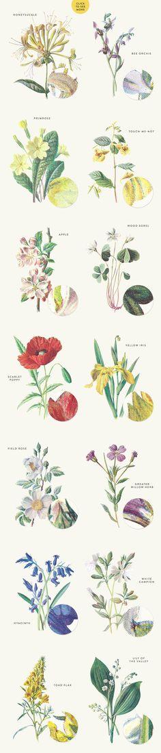 Vintage Flowers Vol.03 - Extra Large by Greta Ivy