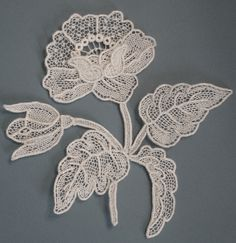 ITALIAN Needle Lace http://needlelacetalk.ning.com/photo/point-de-gaze-flower-with-leaves/next?context=user