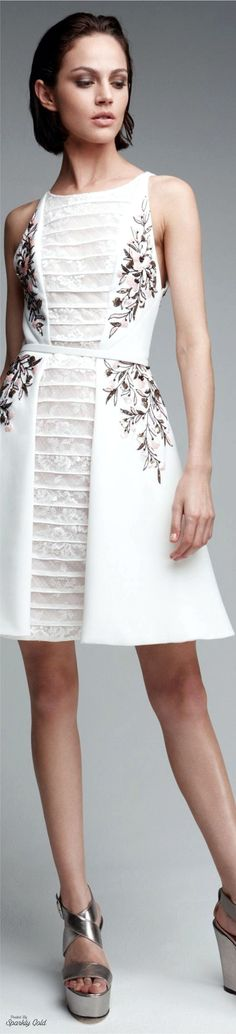 Georges Hobeika R-17 RTW: embroidered dress with lace.