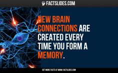 3 Brain Facts: did you know that... Lack of oxygen in the brain for 5 to 10 minutes results in permanent brain damage?