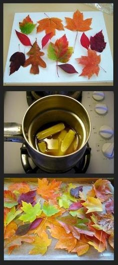 Waxed leaves... Make sure your leaves are completely dry. Melt some beeswax in a double-boiler. You can use new wax or old candle stubs (optional - add a few drops of cinnamon oil).  When the wax is thoroughly melted, take the leaves by the stem and immerse them, one at a time, in the wax. Hold them over the pot to drip a bit, then lay them on waxed paper to dry. by Sadie Williams