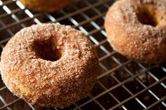 warm & spicy baked pumpkin donuts.