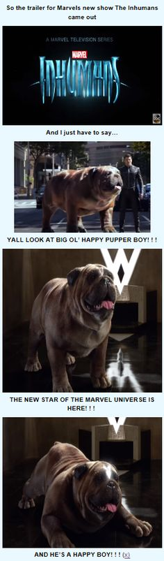 LOCKJAW IS THE MOST CUTE MARVEL DOG IN HISTORY