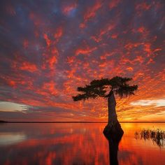 Florida sunset - photo by Paul Marcellini