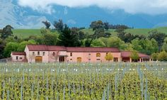 Isabel Winery, photography by PETER BURGE