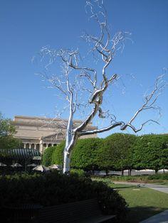 "Roxy Paine ""Graft""  National Gallery of Art Sculpture Garden, DC"