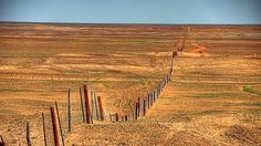"""The dog fence near Coober Pedy, Outback Australia. Road to the Red Heart. The funniest part was that when I was here we saw a dingo just trotting along the """"wrong"""" side of the fence. Dog Fence, Front Yard Fence, Fenced In Yard, Small Fence, Horizontal Fence, Pallet Fence, Fence Art, Concrete Fence, Gabion Fence"""