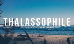 Thalassophile ~ (n) a person who loves seas, oceans
