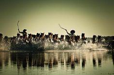 Confira fotografias de Eurico Salis do livro Rio Grande do Sul – O Solo e o Homem:imagem 9