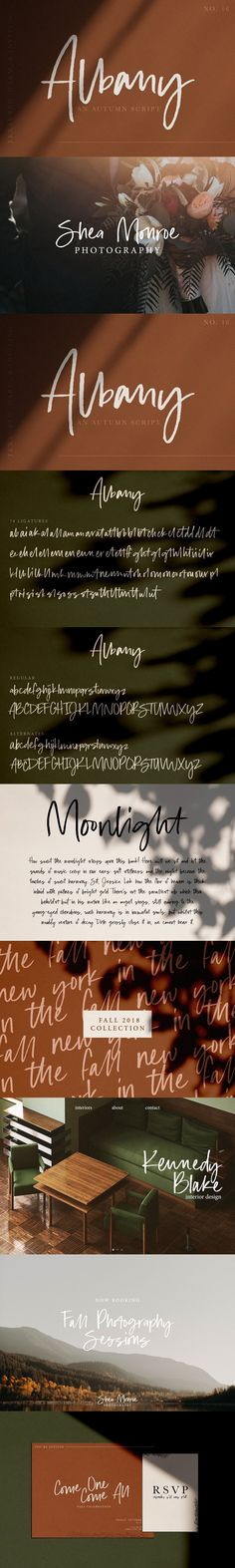 Albany | An Autumn Script Halloween Fonts, English Characters, Script Fonts, Cool Fonts, Printed Materials, Lower Case Letters, Lowercase A, Logo Branding, Signage
