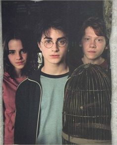 The Trio: Harry Potter, Hermione Granger and Ron Weasley Harry Potter Tumblr, Harry James Potter, Harry Potter Hermione, Harry Potter World, Blaise Harry Potter, Memes Do Harry Potter, Mundo Harry Potter, Theme Harry Potter, Harry Potter Pictures