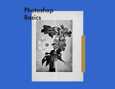 Photoshop Basics - part one in an amazing series of video tutorials.