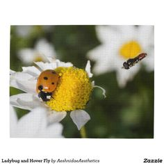 Ladybug and Hover Fly Jigsaw Puzzles