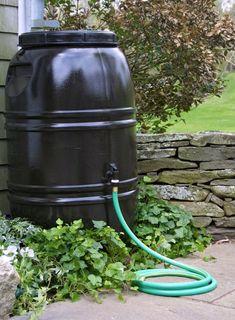 Water Conservation: 45 ways to conserve water Aquaponics Diy, Aquaponics System, American Paint, Drain Plugs, Water Conservation, Water Systems, Save Water, Garden Hose, Rain Garden