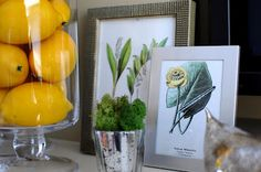 Great Spring Decor Ideas featured on remodelaholic.com #Mantel #decorating