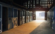 A stable attached to the house by a covered walkway would be amazing...much easier to get to the horses in winter.