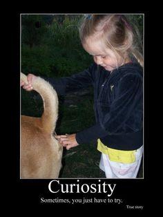 Curiousity.  GROSS GROSS GROSS