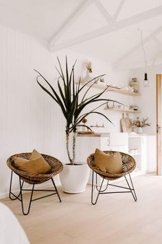 Olive Shed - Guesthouses for Rent in Red Hill, Victoria, Australia Guest House Shed, Shed Cabin, Guest Houses, Luxury Cabin, House Beds, Australian Homes, Bespoke Furniture, Renting A House, Table And Chairs