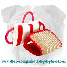 Durable #Bite #Dog #Pillow with Removable #Jute #Cover for #English #Bulldog $39.90 | www.all-about-english-bulldog-dog-breed.com