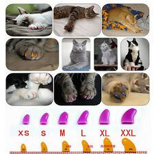 20Pcs Soft Pet Nail Caps Dog Claw Cat Paw Control Avoid Scratch+Adhesive Glue   eBay Cat Nail Caps, Nail Protector, Dog Nails, Pet Paws, Glue On Nails, Claws, Dog Cat, Puppies, Pets