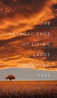 If advice is not evidence-based, its not really advice at all. This list of 7 habits for living life on your own terms is based on a synthesis of contemporary psychological and neuroscientific research.