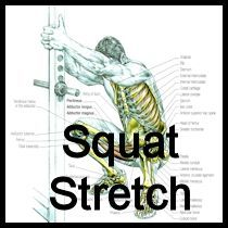 Stretching: How To Stretch For Squat Exercises