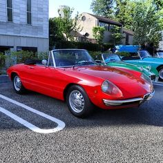 Alfa Alfa, Alfa Romeo Spider, Cars, Classic, Sports, Derby, Hs Sports, Autos, Car