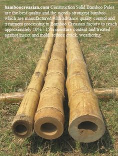 "http://www.bamboocreasian   High Quality Solid bamboo Poles| Bamboo Poles| Bamboo Cane| Bamboo stick| Bamboo Rail|Bamboo Posts Bamboo Poles for Outdoor and indoor     Bamboo poles, Bamboo pole, half round poles and bamboo slats, bamboo cane :1/8""dia - 6""dia, 12ft  naturalcolor. BambooCreasian Poles are harvested from over 4years to be achieved MAX. � Wall - Thickness, Solid and strongest structure"