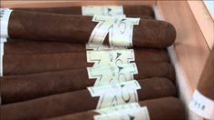 CAO Vision Cigars Overview - Famous Smoke Shop
