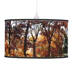 Autumn Leaves Pendant Lamp created from a photograph of mature oak and maple trees in full fall color.