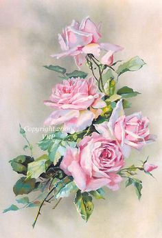 """Pink Cabbage Roses Splendor"" by VictorianRosePrints"