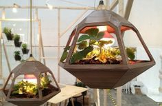 Un terrario en una lámpara colgante  Este diseño ha sido presentado en la Feria del Mueble de Milán y es obra del mexicano José de la O.