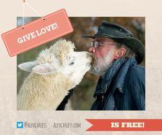 #Love es #free! Find more love in www.alpaca4less.com