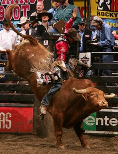 Greg Potter Photo - PBR Anaheim. One of my favorite bull riders....for my bestest homie.