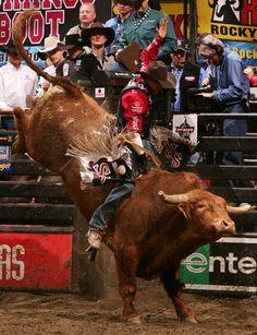 Greg Potter Photo - PBR Anaheim. One of my favorite bull riders.