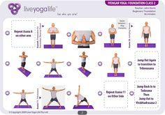 Iyengar Yoga Foundation Class 2 | Live Yoga Life