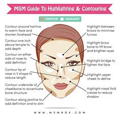 MSM Guide to Highligting & Contouring