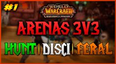 ► Arenas 3v3 Hunt/Disci/Feral | Warlords of Draenor WoW | Español