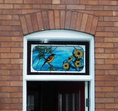 Baltimore Oriole and Black Eyed Susan Stained Glass Transom