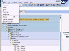 SAP Tutorial Part 1   SAP ERP  #Master Data Management #Mastering Data #How to Management