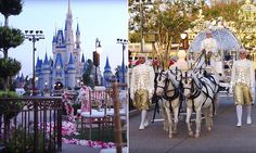 Glass slipper not provided: Couples can now marry inside Disney World