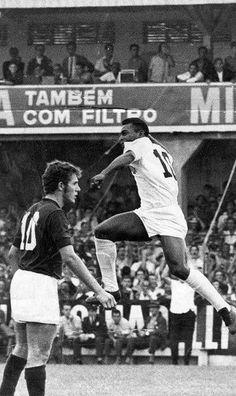 Pelé (19)