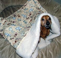 dog snuggle sack diy | Like this item?