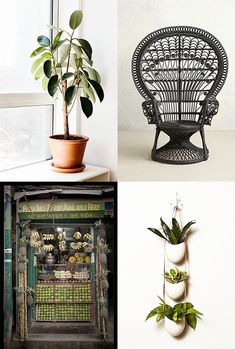 hanging planters - seen frequently! You can #diy them or there are lots of orderable options as well.