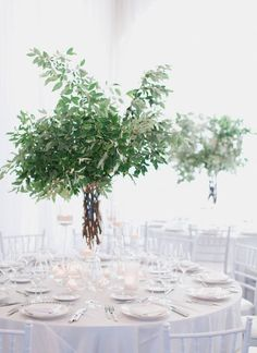 Nathelie and Michael's wedding at Belle Mer (Grey Likes Weddings) Green Centerpieces, Greenery Centerpiece, Succulent Decorations, Round Table Centerpieces, Round Tables, Green Wedding, Floral Wedding, Wedding Flowers, Rustic Wedding