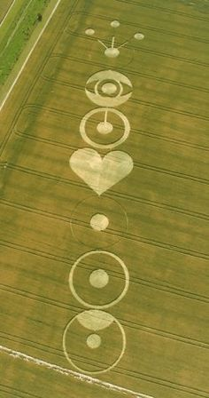 crop circles>>this confirms that aliens are actually 12 yr old girls who end every FB status with <3 and crop circles are the newest in social media.