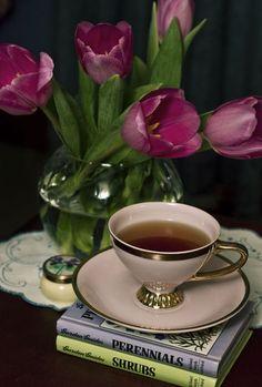 'Still Life with Tea Cup' by Adriana Glackin Coffee Cafe, My Coffee, Morning Coffee, Tea Cup Art, Coffee Flower, Flower Aesthetic, Still Life Art, Tea Cup Saucer, High Tea