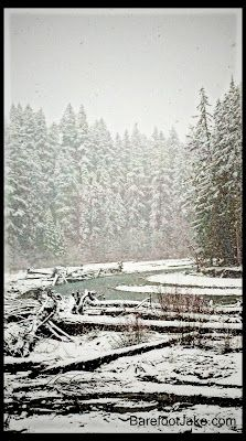 Blog:  Backpacking the Elwha River Valley in winter.