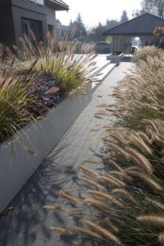 Front Yard Design, Contemporary Garden, Backyard, Patio, Modern Landscaping, Garden Paths, Garden Inspiration, Garden Design, Sidewalk