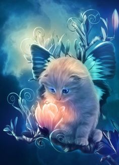 fairy kitty